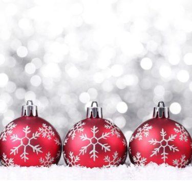 Laatste plekjes voor de kerstdagen!